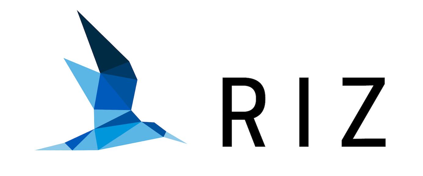 RIZ Consulting